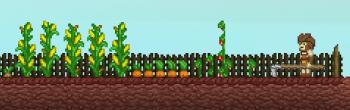 Apex_Farm