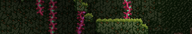 Wilderness_Banner